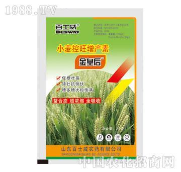 小麦控旺增产素-金皇后