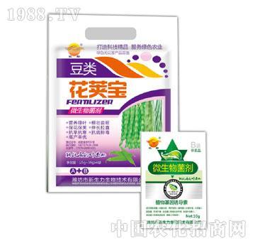 微生物菌剂豆类花荚宝A+B