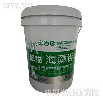 肥猫海藻钾