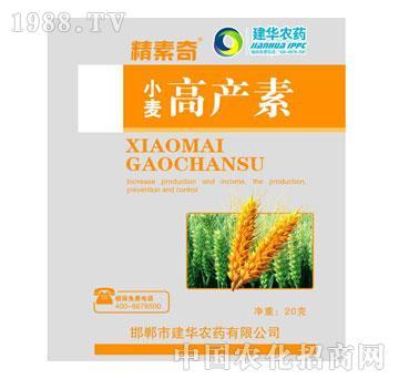 高产素-小麦