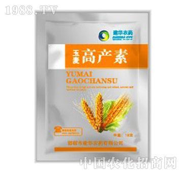 高产素-玉麦
