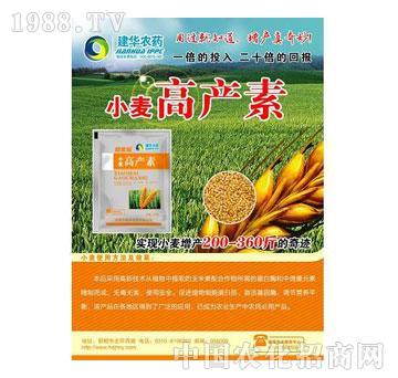高产素-小麦(1)