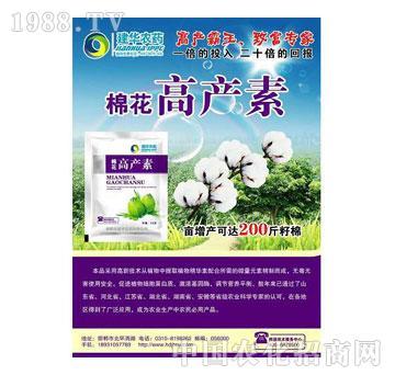 高产素-棉花(1)