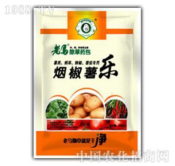 茄科作物田除草剂