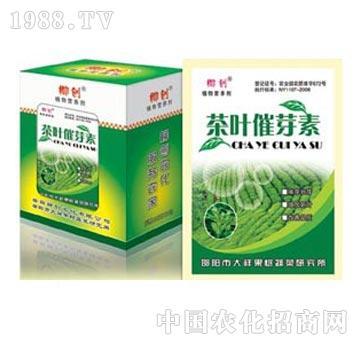 茶叶催芽素