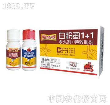 红象-精品型白粉虱1+1