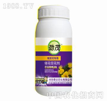 泰达-劲茂-观赏花专用催花促花剂