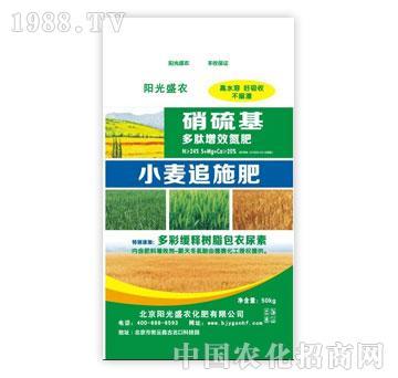 阳光盛农-小麦追施肥-硝硫基多肽增效氮肥