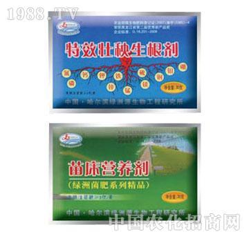 绿洲源-特效壮秧生根剂、苗床营养剂