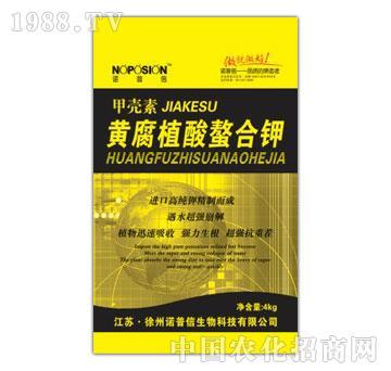诺普信-黄腐植酸螯合钾
