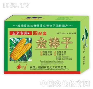 金棒子玉米专用
