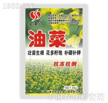金漯红油菜30g