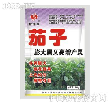 金漯红茄子30g