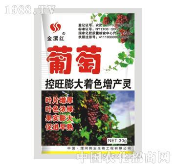 金漯红葡萄30g