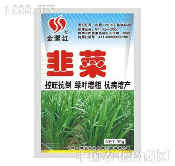 金漯红韭菜30g