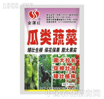 金漯红瓜类蔬菜30g