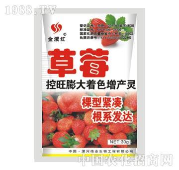 金漯红草莓30g