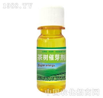 茶树催芽剂
