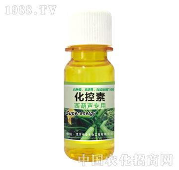 化控素西葫芦专用