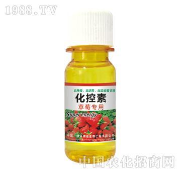 化控素草莓专用