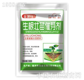 金漯红生根壮苗催芽剂