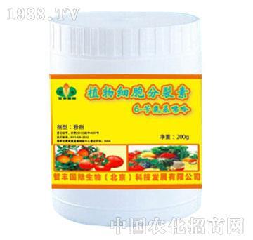 植物细胞分裂素6-卡氨基嘌呤-贺丰国际