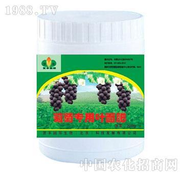 葡萄专用叶面肥-贺丰国际