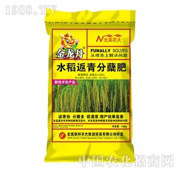 金龙丹水稻返青分蘖肥-北美联邦-北美农大
