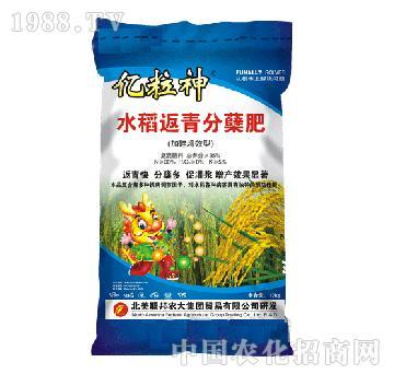亿粒神水稻返青分蘖肥-