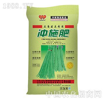 豆角芸豆专用冲施肥16