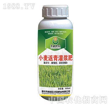 小麦返青灌浆肥-沃田