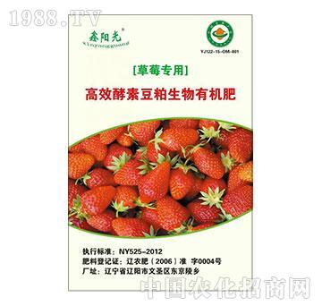 高效酵素豆粕生物有机肥(草莓专用)-阳光