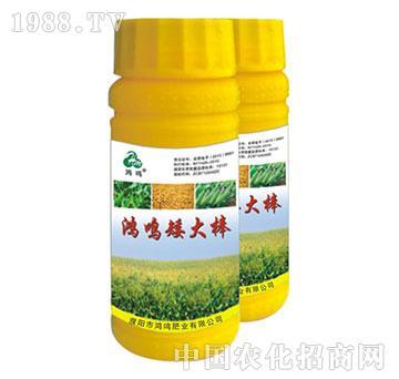玉米专用叶面肥-鸿鸣肥业