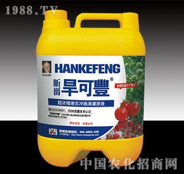 旱可丰西红柿5kg