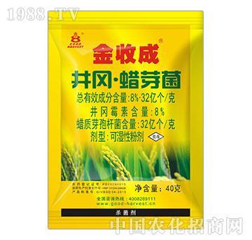 40%井冈蜡芽菌(水稻