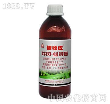 12.5%蜡质芽孢杆菌
