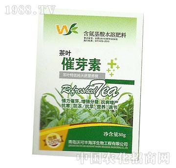 催芽素-茶叶-沃可丰