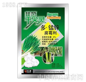 8%多锰锌腐霉利-韭葱干尖灵-世王泰