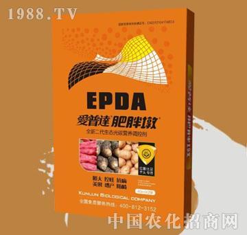 爱普达肥胖墩-红薯土豆