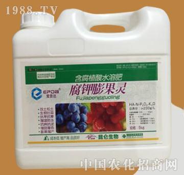 腐钾膨果灵-含腐殖酸水溶肥-昆仑生物