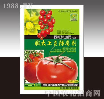 西红柿加钙膨大上色防腐剂-万物春