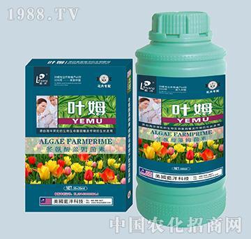 冬氨酸藻姆菌素-花卉专