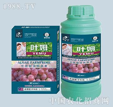 冬氨酸藻姆菌素-葡萄专