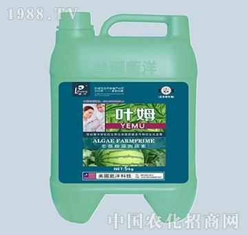 冬氨酸藻姆菌素-西甜瓜