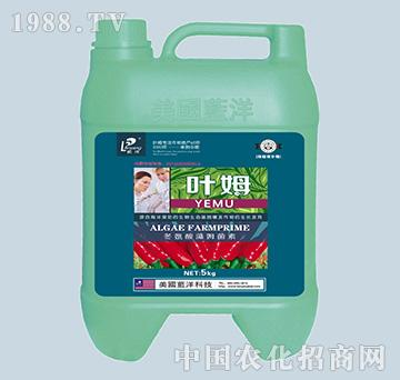 冬氨酸藻姆菌素-辣椒根补精-叶姆