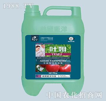 冬氨酸藻姆菌素-番茄根
