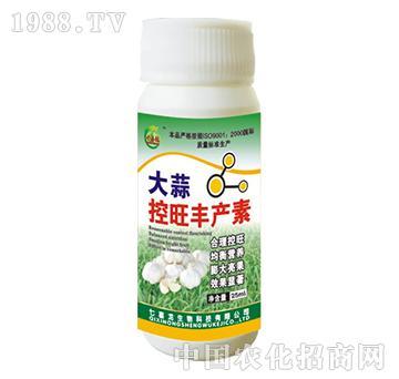 大蒜控旺丰产素-七喜龙