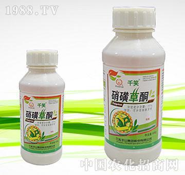10%硝磺草酮可分散油悬浮剂-千笑-丰山
