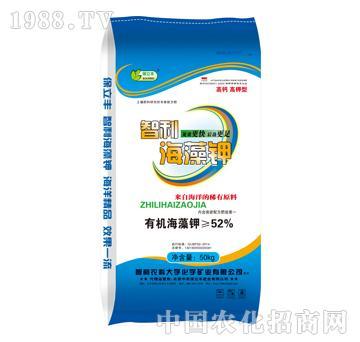 52%智利海藻钾-保立
