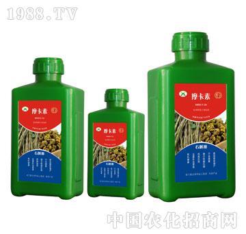 石斛专用氨基酸螯合液肽